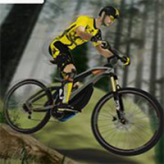 mtb pro racer game