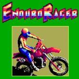 enduro racer arcade game