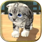 cat simulator: kitty craft game