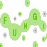 fungi game