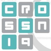 crossniq game